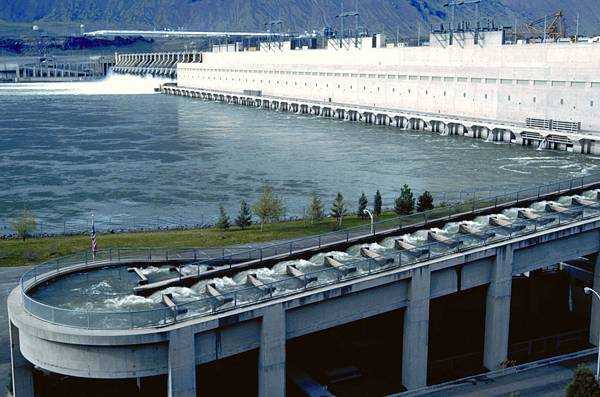 Twenty years of progress columbia river basin fish and for Fish count bonneville dam