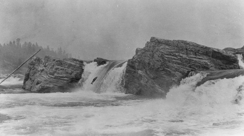 Kettle Falls