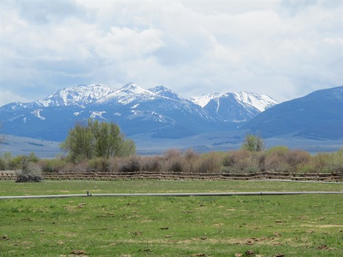 Lemhi Mts ., Riparian Fencing , Irrigation Diversion