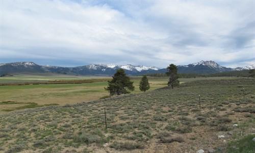 Pole Creek , Sawtooth Mts ., Idaho , Irrigation Diversion , Grazing Management
