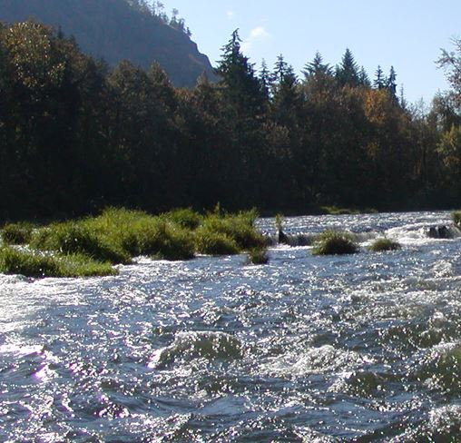 Waves in a pretty river.JPG